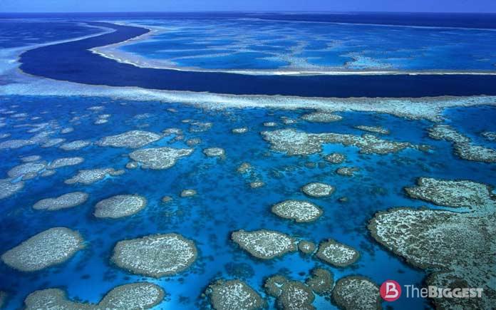 Коралловое море - самое крупное море в мире