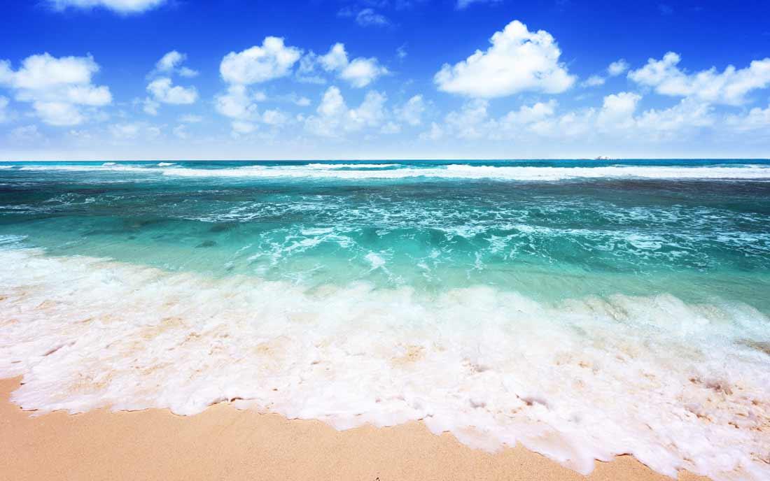 самые крупные моря
