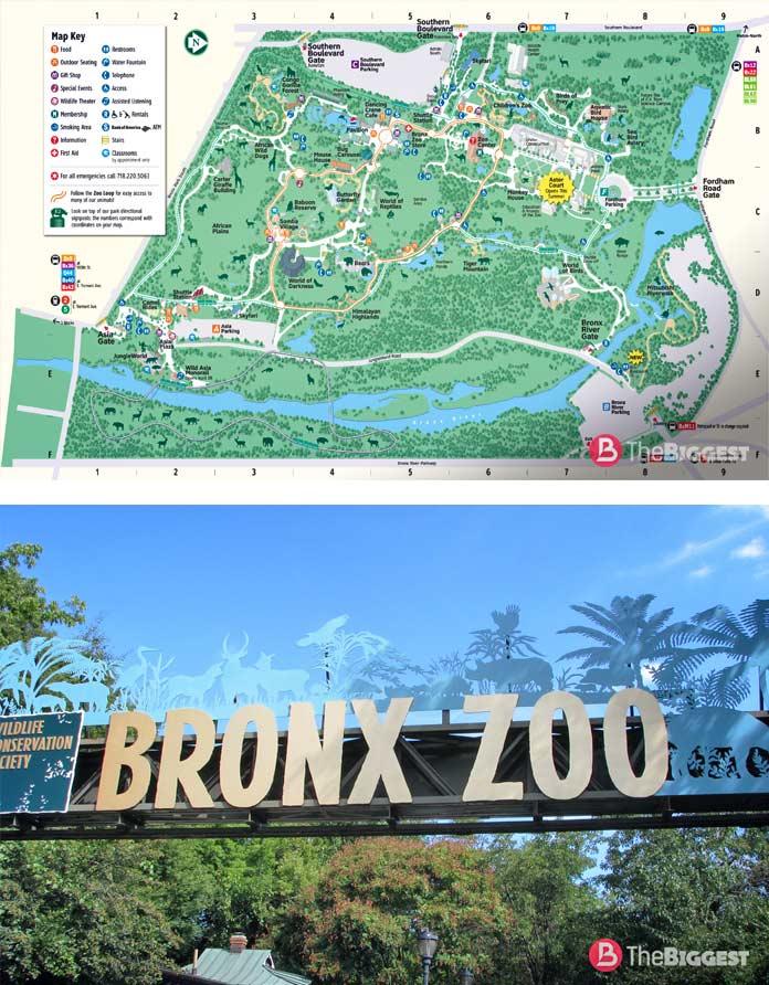 Бронкский зоопарк