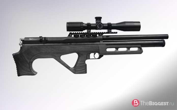 Самые мощные пневматические винтовки: EDgun Мatador R3M
