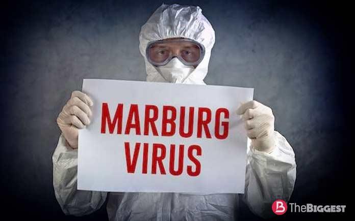 Самые опасные вирусы в мире: Марбург