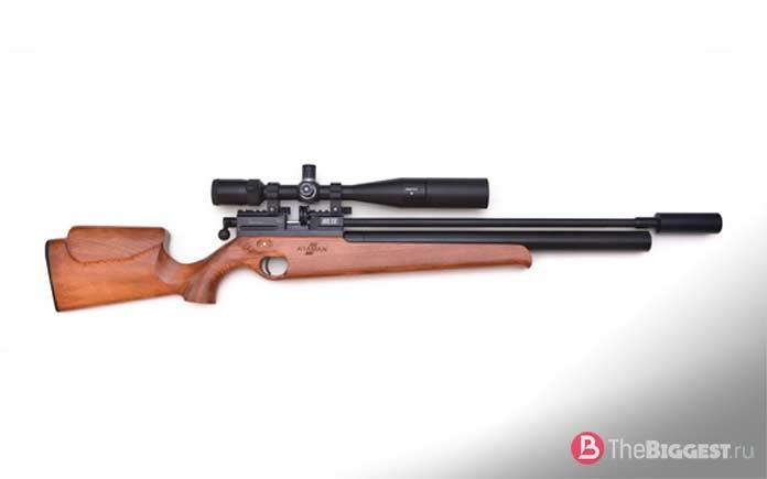 Самые мощные пневматические винтовки: PCP ATAMAN ML 15B