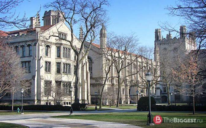 university of chicago application essay 2013 Example essays therealsunshine 15 new member july 2012 edited october 2013 in university of chicago they supplement the common application essay.