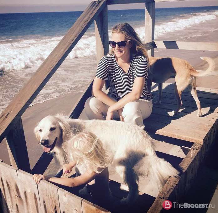 Самые богатые собаки: Дрю
