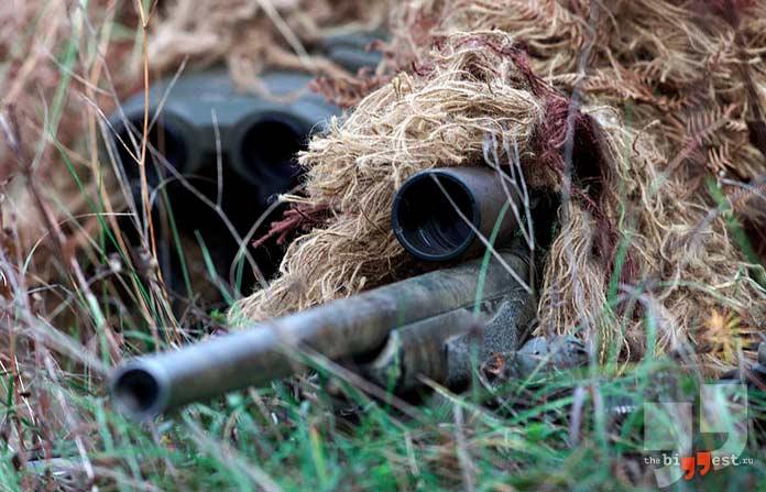 Лучшие снайперские винтовки в мире. CC0