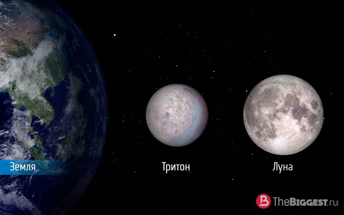 Размеры Тритона