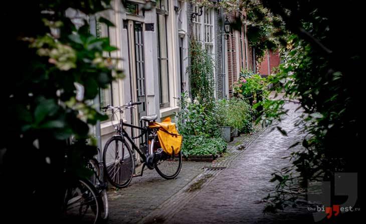 Нидерланды. CC0