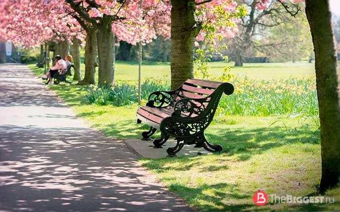 Красивые парки Лондона