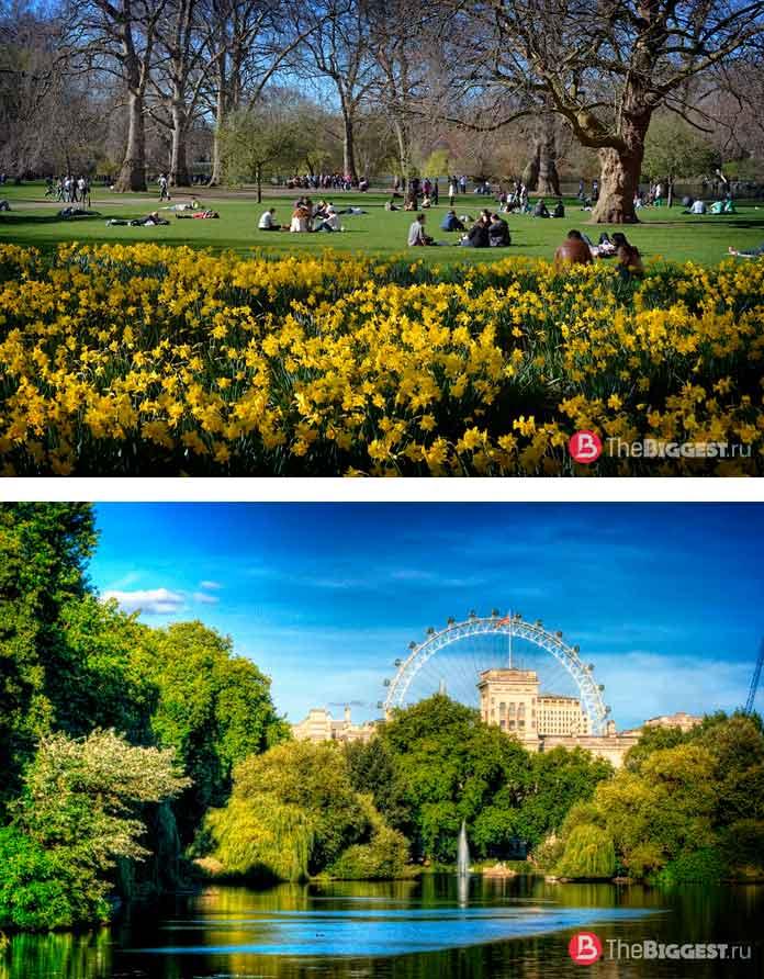 Красивые парки Лондона: st james park