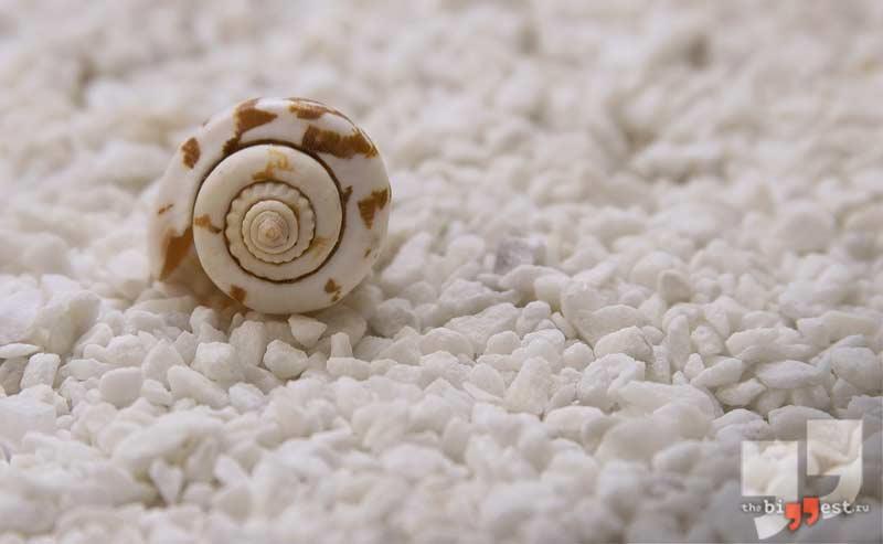Морская соль cc0
