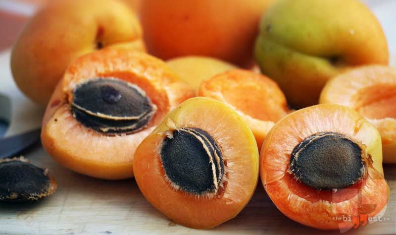 Семечки абрикоса cc0