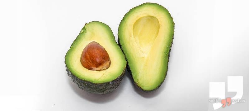 история авокадо