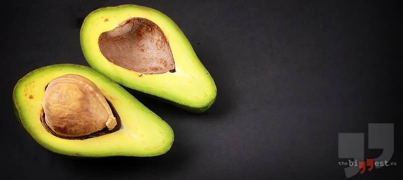 семена авокадо сс0
