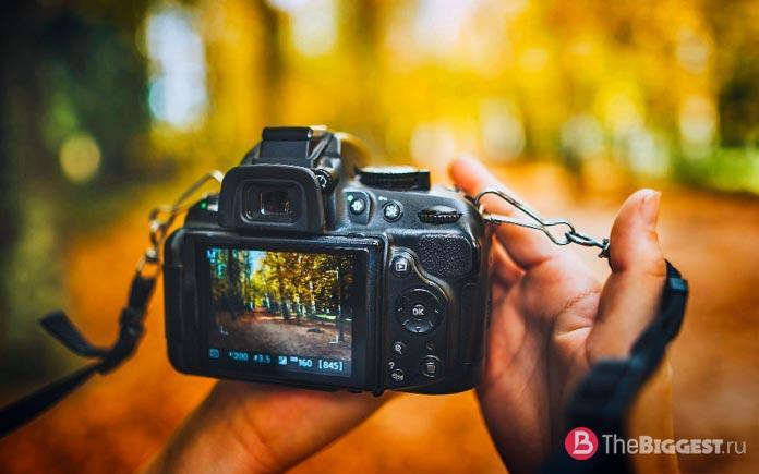 10 лучших профессиональных фотоаппаратов в мире