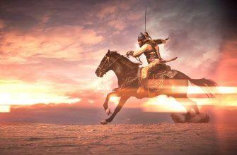 Исламский воин