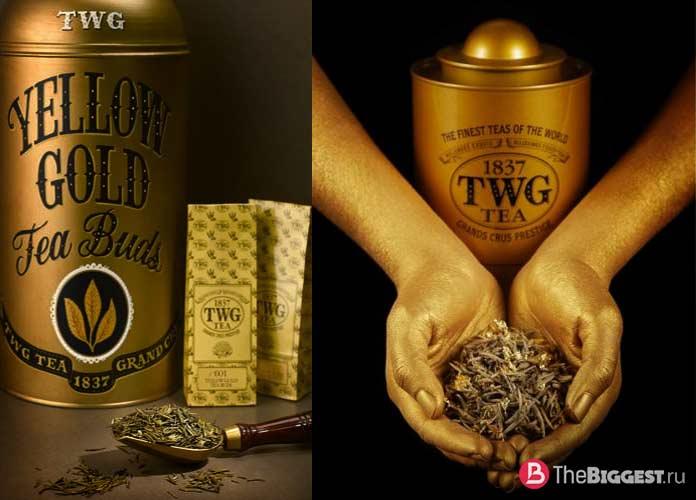 Золотистые чайные головки - один из самых дорогих чаёв
