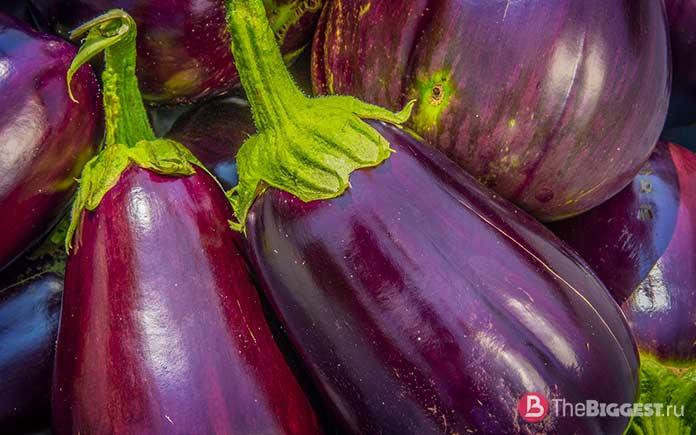 Баклажан - один из самых популярных овощей