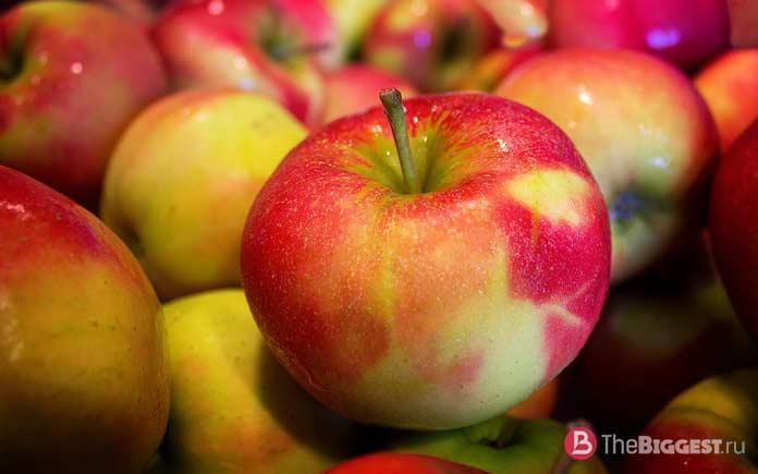 Что нужно есть для здоровья: Фрукты