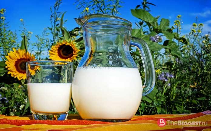 Еда на каждый день: Молочные продукты.