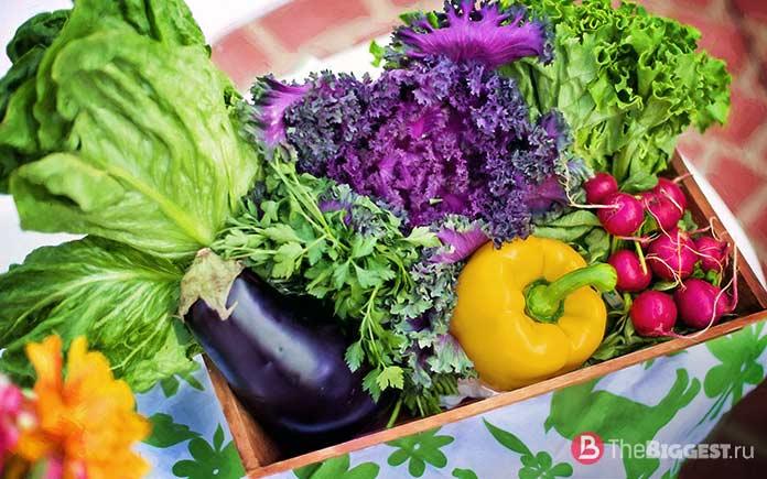 Самые популярные овощи в мире