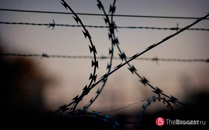 Хирургические операции: 10 страшных экспериментов Северной Кореи. CC0
