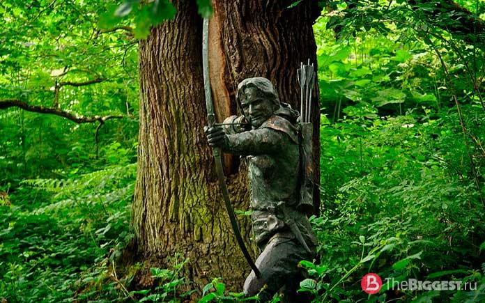 Достопримечательности Англии: Шердвудский лес. CC0