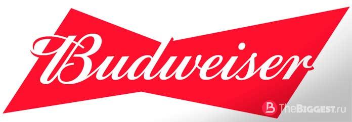 Самые вкусные сорта пива: Budweiser