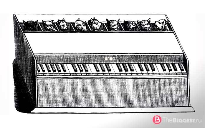 Пианино из кошек