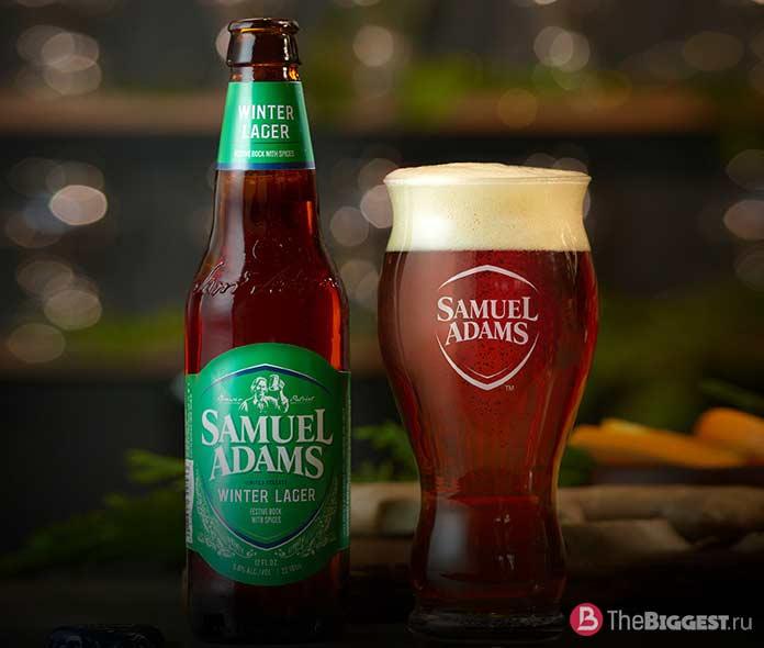 Вкусные сорта пива: Samuel Adams