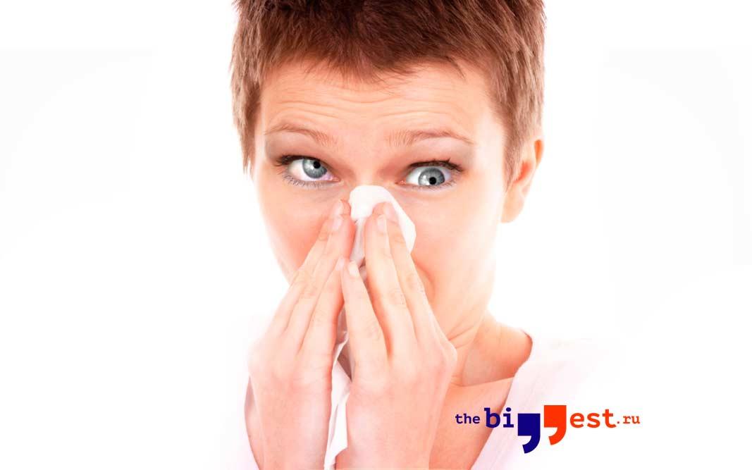 Аллергии. CC0