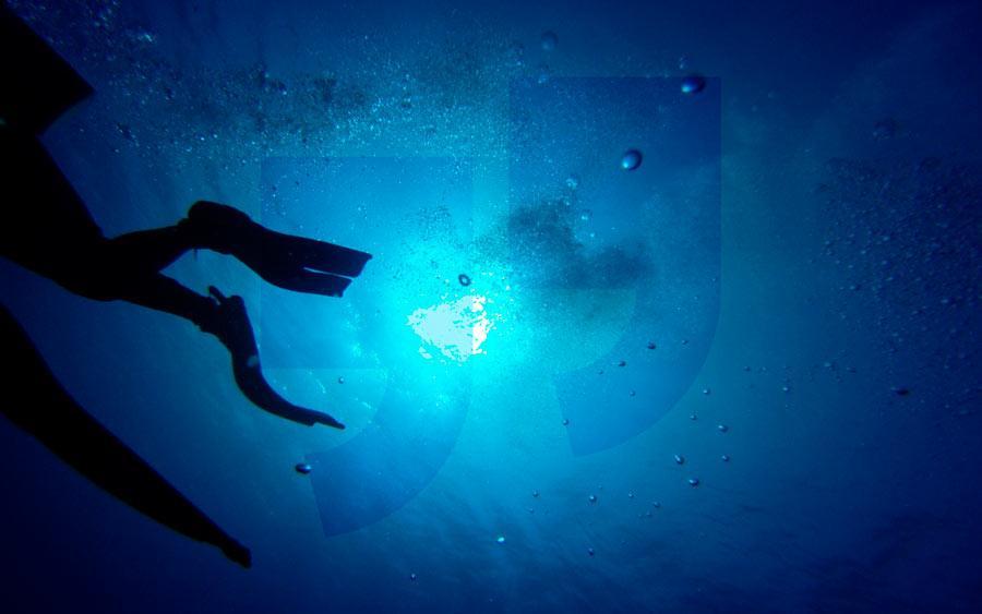 Глубокие моря. CC0