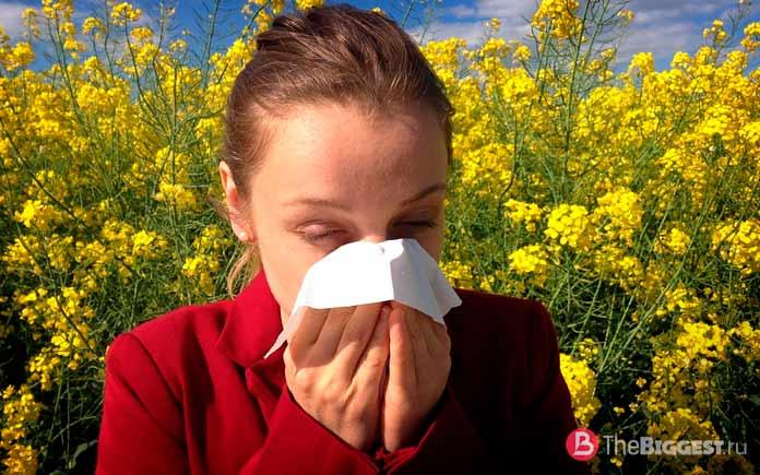 Распространённые аллергии. СС0