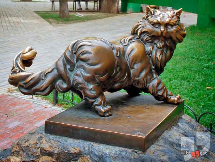 Кот Пантелеймон. CC0