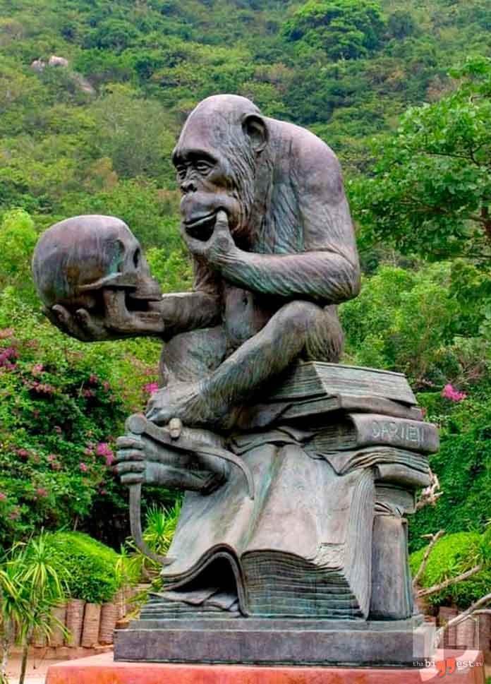 Памятники животным: Шимпанзе