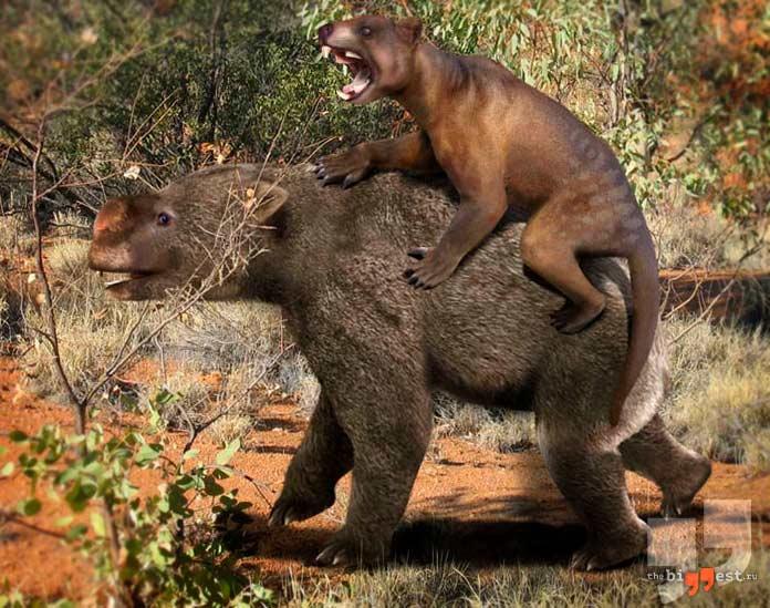 Вымершие животные четвертичного периода. CC0