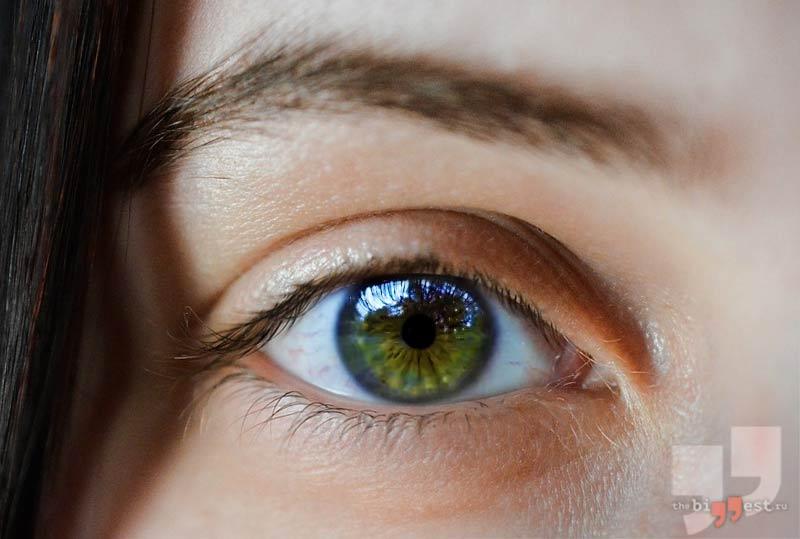 Ореховые глаза. CC0