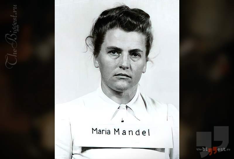 Мария Мендель. CC0