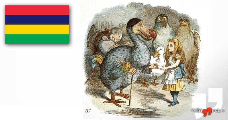 Птица Додо. Маврикий