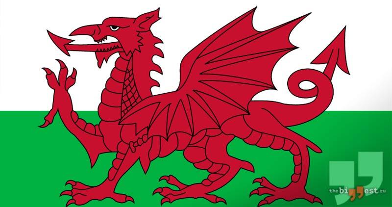Валлийский дракон. CC0