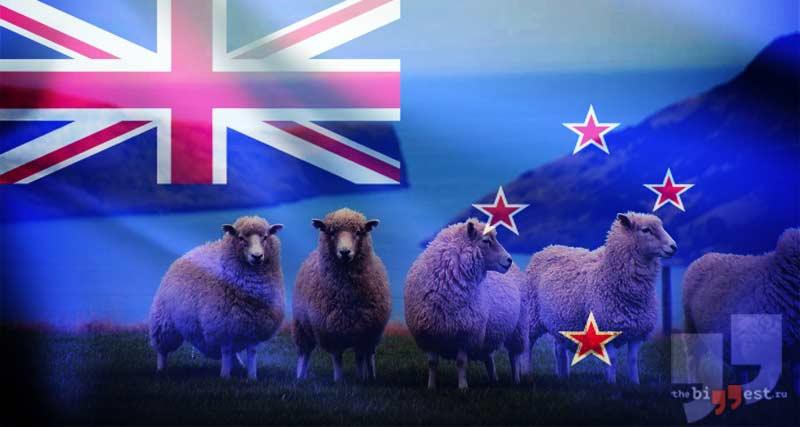 Новая Зеландия cc0