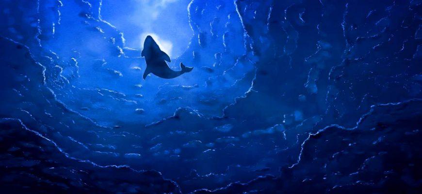 Тест про океаны cc0